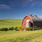 A Week of Teaching in the Palouse